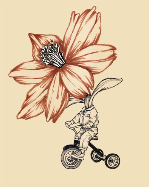 little_danny_daffodil_sm2