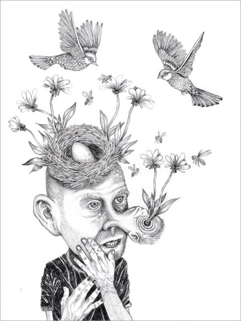 Birds & Bees, Pencil on panel, 24 x 18 inches, 2013
