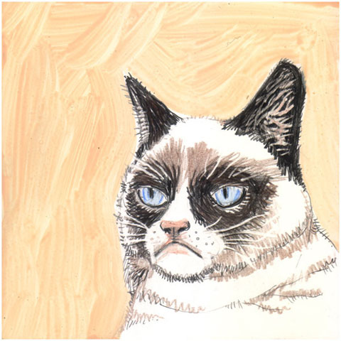 cats_grumpy