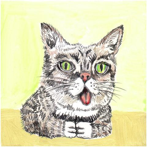 cats_lilbub