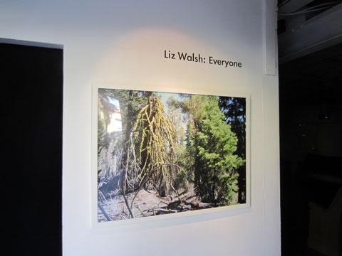 Liz Walsh @ Krowswork