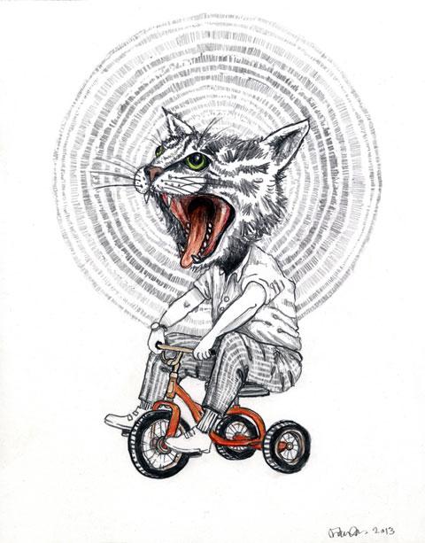 catattack
